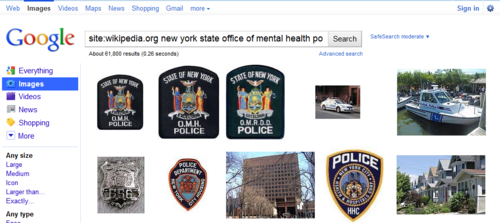 new york state office of mental health police - Google Image Search  Click the pic to run the search... image from psychout.typepad.com